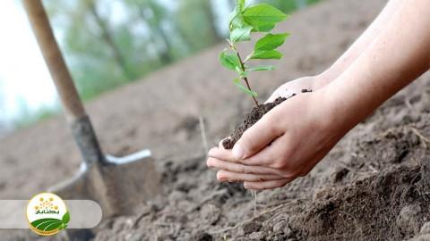 مشخصات باغ نمونه مادر کشور