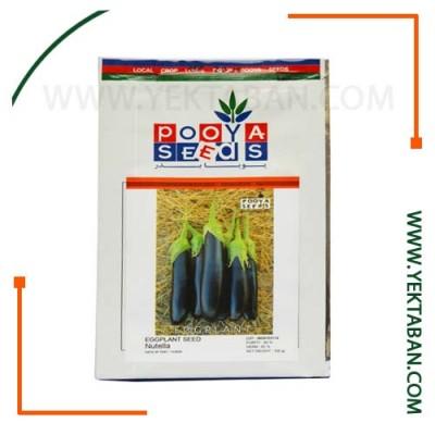 بذر بادمجان قلمی نوتلا (پاکت) پویا بذر