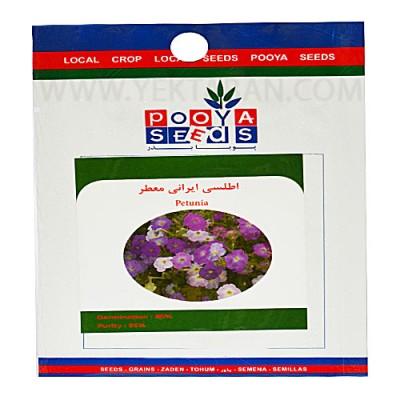 بذر-گل-اطلسی-ایرانی-معطر-پویا-بذر