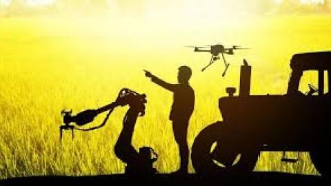 بینایی رایانه ای در صنعت کشاورزی