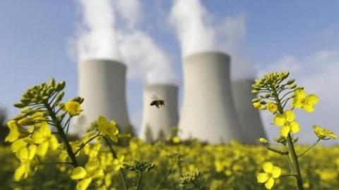 انرژی هسته ای و کشاورزی